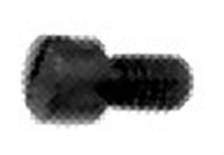 Needle Clamp Screw # 700288